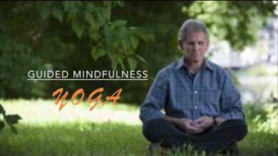 Mindfulness con el Maestro Jon Kabat-Zinn