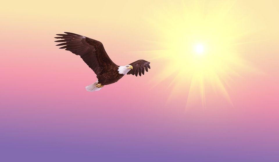 Cómo Atraer Abundancia y Prosperidad - Louise Hay