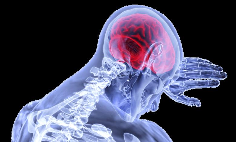 El cerebro humano puede anticipar los peligros