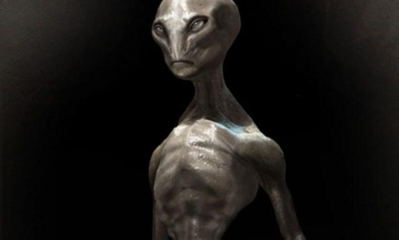 Razas de Extraterrestres catalogadas