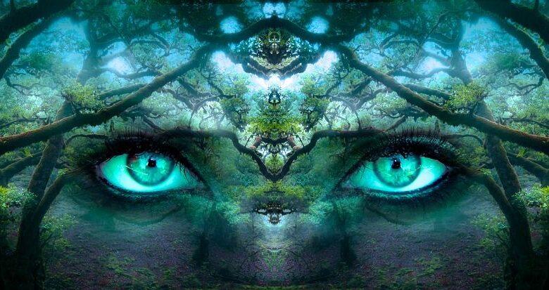 La mirada del observador
