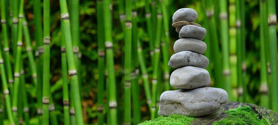 Crep Sculo | Refranes Y Proverbios Zen | Reflexiones